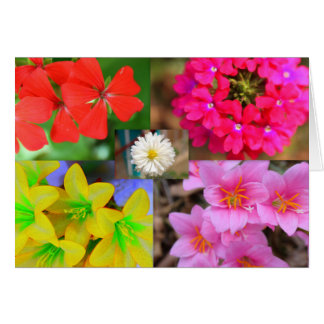 Cartão variedade de flores