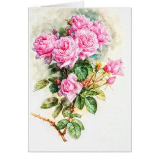 Cartão Vazio restaurado pintura do rosa do rosa do