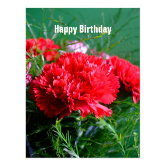 Cartão vermelho do feliz aniversario dos cravos cartoes postais