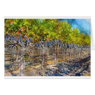 Cartão Vinhas em Napa Valley Califórnia