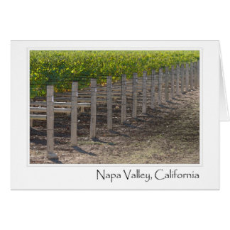 Cartão Vinhedo de Napa Valley Califórnia