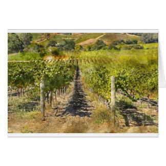 Cartão Vinhedo do vinho de Califórnia