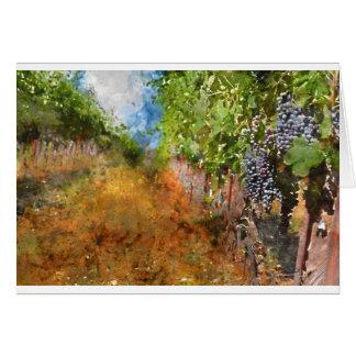 Cartão Vinhedo em Napa Valley Califórnia