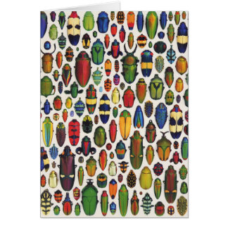 Cartão Vintage colorido besouros ilustrados