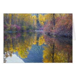 Cartão WA, floresta nacional de Wenatchee, angra de