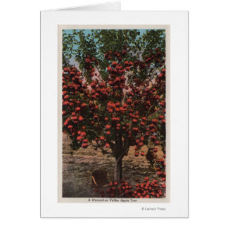 Cartão Wenatchee, árvore de Apple do vale de WAA
