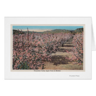 Cartão Wenatchee, WAView de árvores de Apple na flor