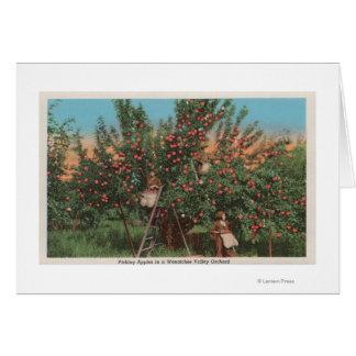 Cartão Wenatchee, WAView do pomar de Apple & dos