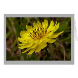 Cartão Wildflower amarelo da flor 3 no campo