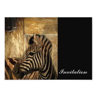 Cartão zebra rústica do animal do safari de África do