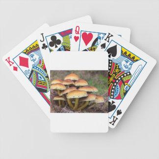 Cartas De Baralho Cogumelos marrons do grupo na floresta da queda