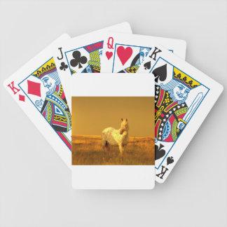 Cartas De Baralho O cavalo manchado no fulgor dourado de uma