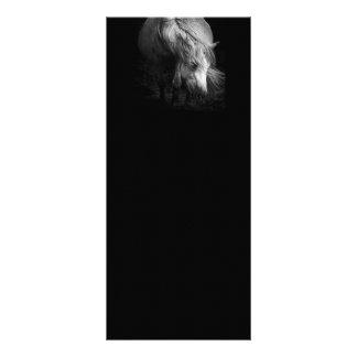 Cartões da cremalheira da cabeça e da juba do pône 10.16 x 22.86cm panfleto