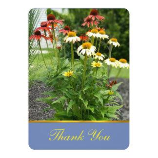 Cartões de agradecimentos coloridos das margaridas