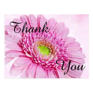 Cartões de agradecimentos da flor cartão postal