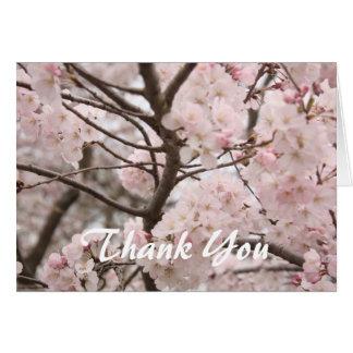 Cartões de agradecimentos da flor de cerejeira