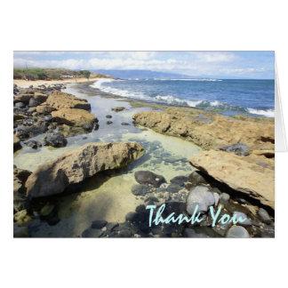 Cartões de agradecimentos do litoral de Havaí