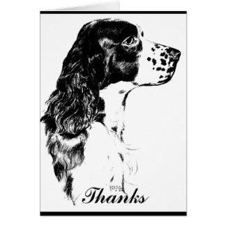 Cartões de agradecimentos do Spaniel de Springer