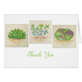 Cartões de agradecimentos do trio do Succulent