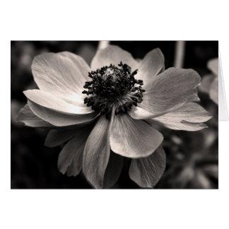 Cartões de agradecimentos florais da simpatia da