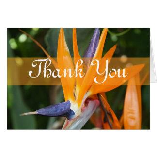 Cartões de agradecimentos tropicais do casamento