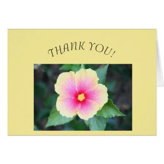 Cartões de agradecimentos, vazio para dentro