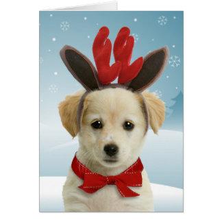 Cartões de Natal do filhote de cachorro da rena