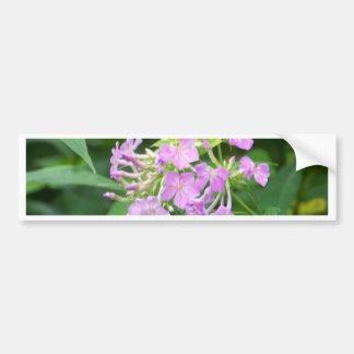 Cartões de nota da flor adesivo