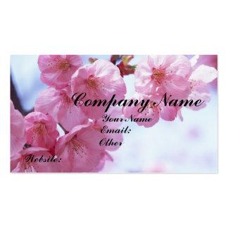 Cartões de visitas das flores de cerejeira