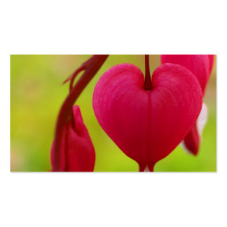 Cartões de visitas do coração de sangramento (pais