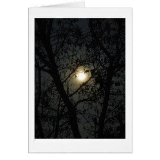 Cartões - Lua cheia da manhã