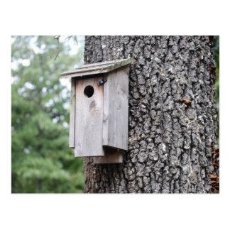 Casa do assentamento do Bluebird Cartão Postal
