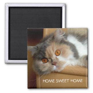Casa doce Home do gato Ímã Quadrado
