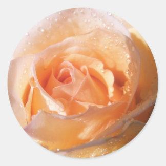 Casamento cor-de-rosa Sunlit Adesivo