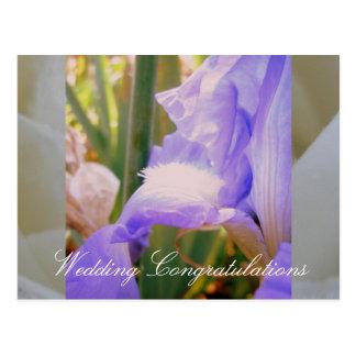 Casamento ideal do verão cartão postal