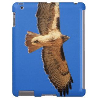 caso do iPad com falcão do vôo Capa Para iPad