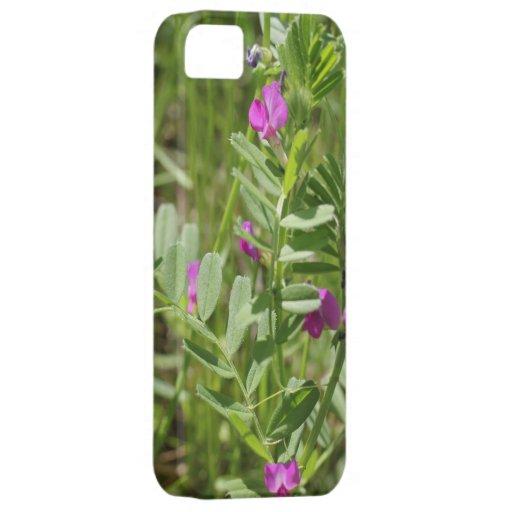 Caso do iPhone 5/5C do Wildflower da ervilhaca de  Capas De iPhone 5 Case-Mate