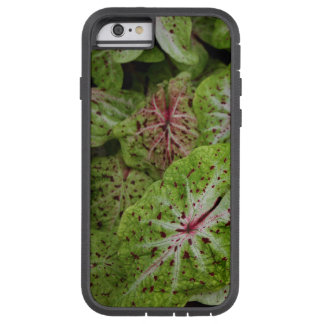 Caso do iPhone 6 de Gingerland do Caladium Capa iPhone 6 Tough Xtreme