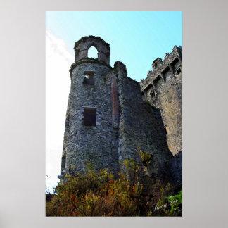 Castelo do Blarney, Ireland Pôster