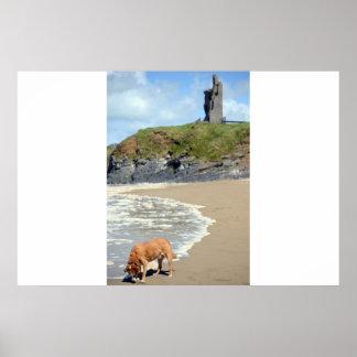 castelo e cão atlânticos selvagens da maneira poster