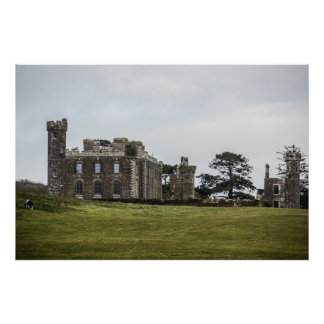 Castelo irlandês poster