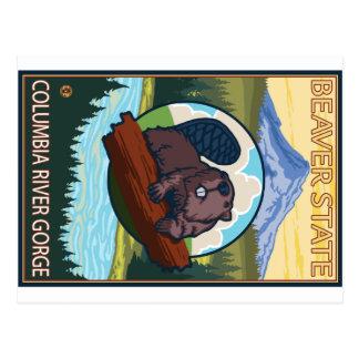 Castor & capa do Mt. - desfiladeiro do Rio Cartão Postal