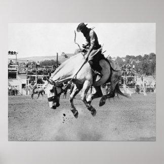 Cavalo bucking da equitação do homem no rodeio poster
