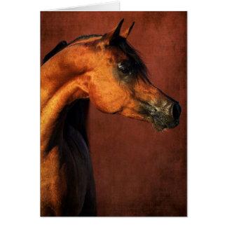 Cavalo do Arabian da baía Cartão Comemorativo