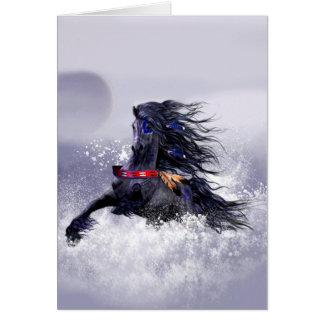 Cavalo indiano do garanhão majestoso azul preto na cartão