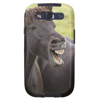 Cavalo islandês com expressão engraçada capinha samsung galaxy s3