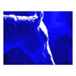Cavalo na noite - cavalo no luar convite
