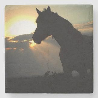 Cavalo na porta copos do por do sol porta-copos de pedra