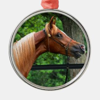 Cavalo nacional da mostra ornamento redondo cor prata