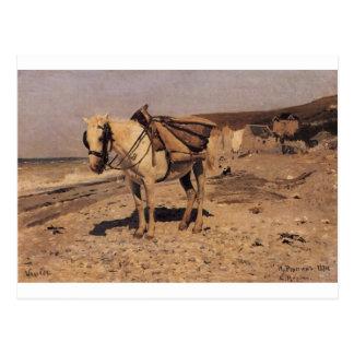 Cavalo para as pedras que recolhe nos Vela Cartão Postal